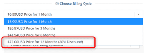 "[WIN-VPS.comの使い方]手順②:""Choose Billing Cycle""から"".00USD Price for 12 Months (20% Discount)""を選択"