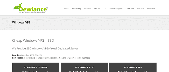 (11) Dewlance | Cheap Windows VPS - /m - SSD